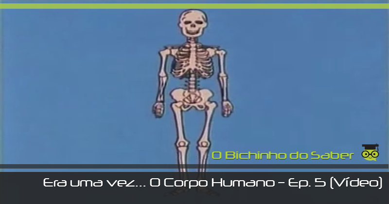 Era uma vez o Corpo Humano - episódio 5