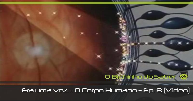 Era uma vez o Corpo Humano - episódio 8