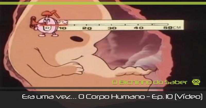 Era uma vez... o Corpo Humano | Episódi o10 - O Nascimento