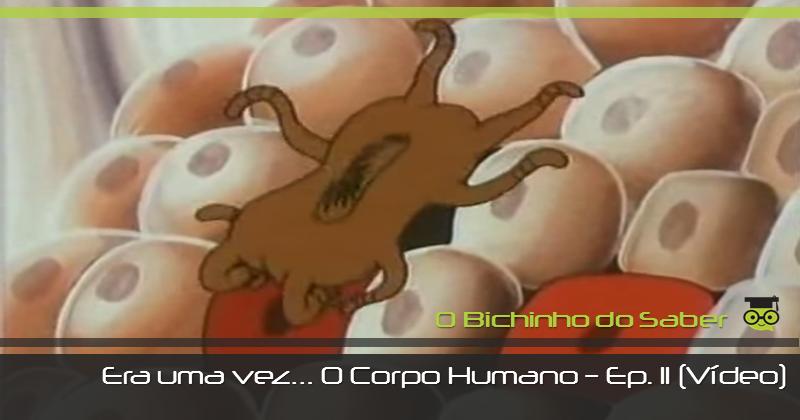 Era uma vez... o Corpo Humano | Episódio 11 - O Sistema Imunitário